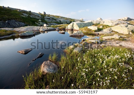 Coastline in Norwegian fjords, Scandinavia, Europe - stock photo