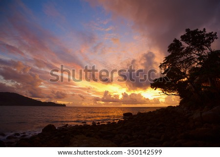 Coastline sunset, sunrise with beautiful blue sky and golden clouds and a silhouette of the trees in the foreground. - stock photo