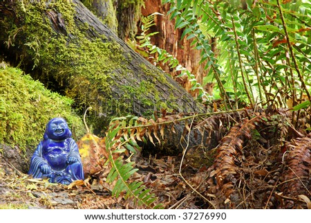 Cobalt blue Buddha statue nestled in old growth forest - stock photo