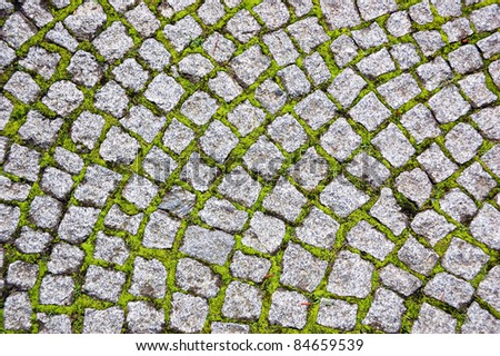 Cobblestone pavement with moss growing between stones - stock photo