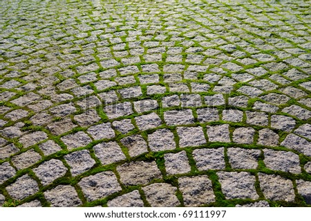 Cobblestone with grass bricks showing perspective to a new beginning. - stock photo