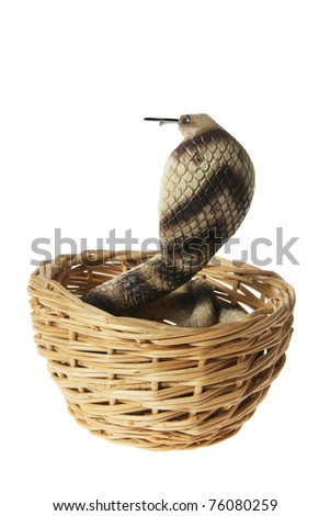 Cobra in Basket on White Background - stock photo