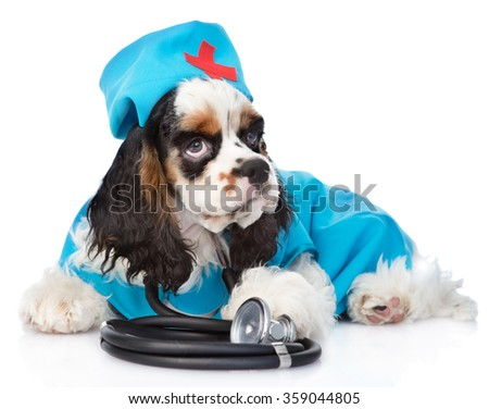Cocker Spaniel puppy wearing hat doctor with stethoscope on his neck. isolated on white background - stock photo
