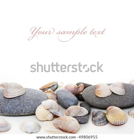 cockle-shell with pebble on white background - stock photo