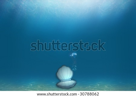 cockleshell in a water - stock photo