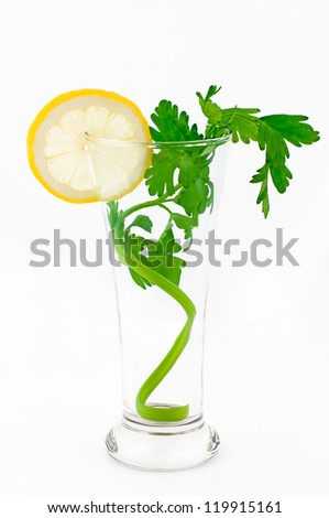 Cocktail, fresh green celery in a glass with lemon segment