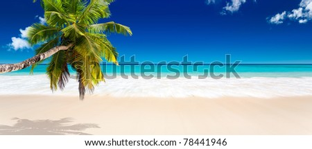 coco beach in seychelles - stock photo