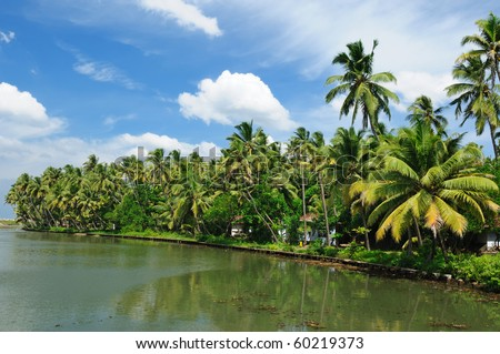 Coco trees reflection at back waters of Kerala, India - stock photo