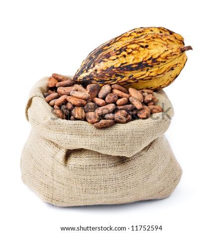 Cocoa bean and pod on bag - stock photo