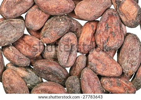 Cocoa beans close-up on white background - stock photo