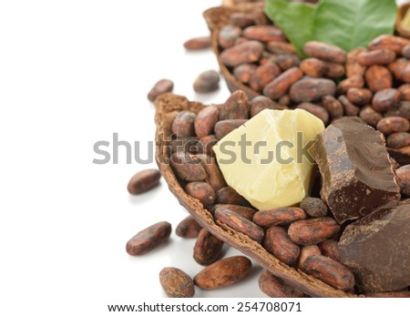 Cocoa beans, cocoa butter and cocoa mass on a white background - stock photo
