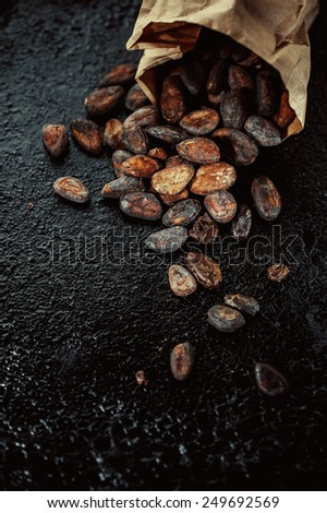 Cocoa beans in a paper bag on a dark background - stock photo