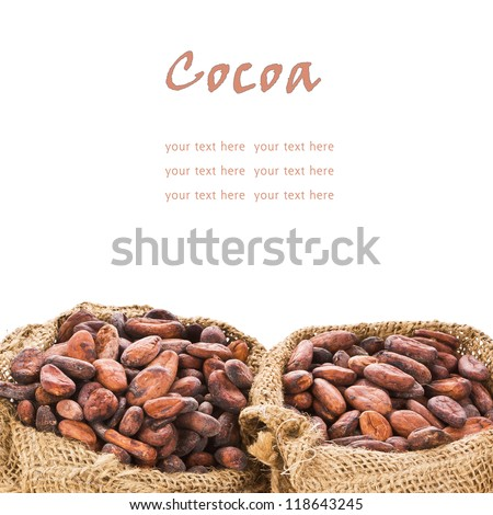 cocoa beans in bags of linen,  isolated on white background - stock photo