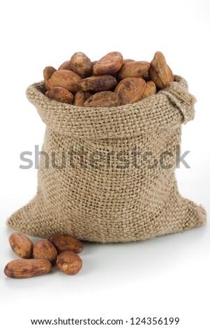 Cocoa beans in burlap bag - stock photo