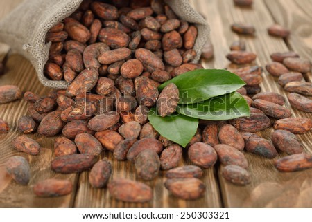 Cocoa beans on a brown background - stock photo