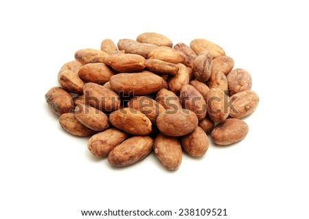 Cocoa beans on a white background - stock photo