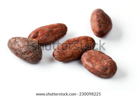 Cocoa Beans on the White Background Closeup - stock photo