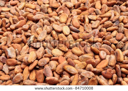 cocoa beans /shallow dof/ - food and drink