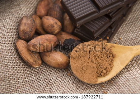 Cocoa (cacao) beans with chocolate - stock photo