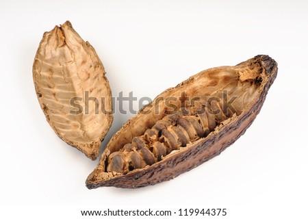 Cocoa fruit on white background - stock photo