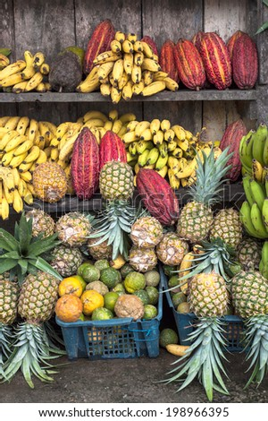 Cocoa fruit surrounded by other tropical fruits on the counter of the Latin America street market, Ecuador - stock photo