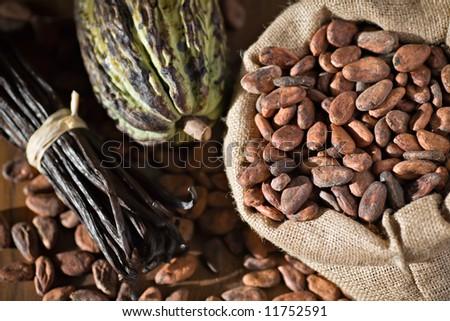 Cocoa pod and beans with vanilla - stock photo