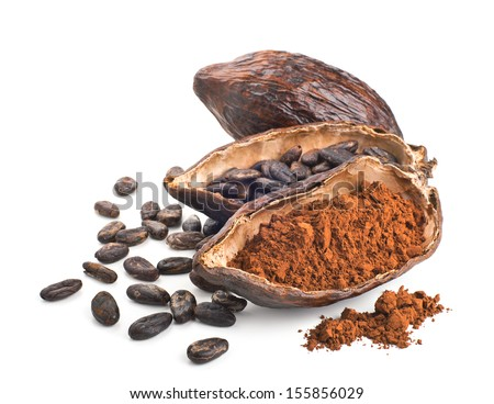 Cocoa pod, beans and powder isolated on a white background - stock photo