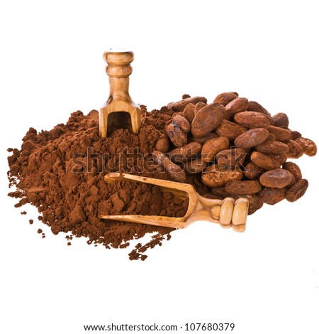 cocoa powder and cocoa beans with wooden scoop isolated on white background - stock photo