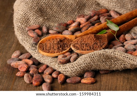 Cocoa powder in spoons and cocoa beans on wooden background - stock photo