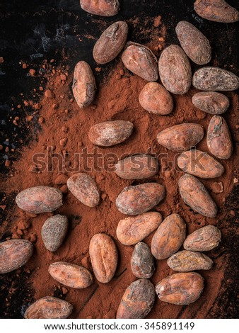 Cocoa roasted beans and cocoa powder - stock photo