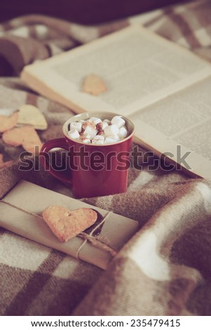 Cocoa with marshmallows on a plaid blanket with a book in the background, retro toning - stock photo