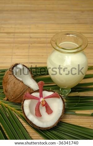 Coconut and coconut milk - stock photo