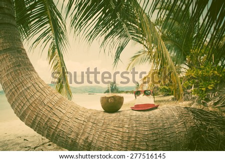 Coconut and hat on palm tree on exotic beach - retro style  - stock photo