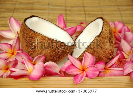 Coconut and tropical flowers - stock photo