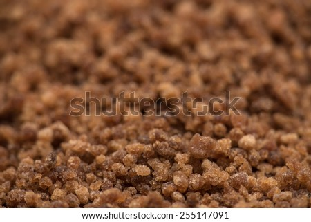 Coconut blossom sugar macro with selective focus on foreground - stock photo