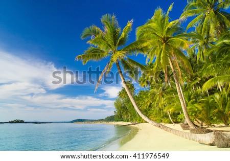 Coconut Coast Beautiful Beach  - stock photo