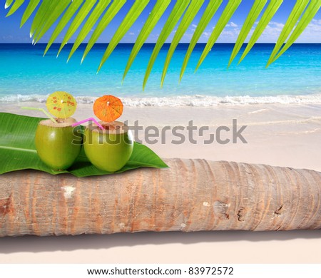 coconut cocktails over palm tree trunk in turquoise sea of Caribbean white sand beach [ photo-illustration ] - stock photo