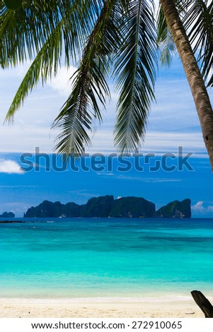 Coconut Getaway Jungle and Sea  - stock photo