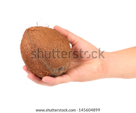 coconut in hand isolated on white background - stock photo