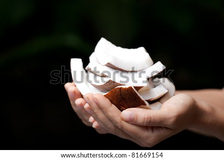Coconut in hands. SPA Collection. - stock photo