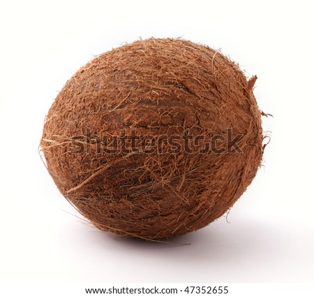 coconut isolated on white - stock photo