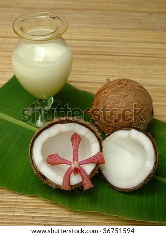 Coconut milk for alternative therapy - stock photo