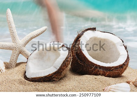 coconut on the beach against the backdrop of the ocean - stock photo