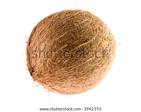 Coconut on white background (isolated)