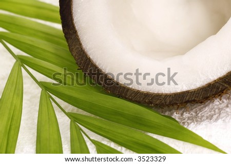 coconut, palm leaf and white towel. spa - stock photo