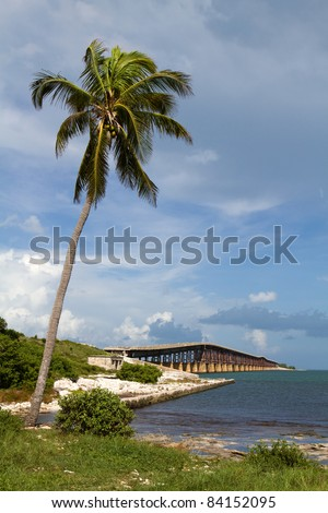 Coconut palm tree leans out over the water at Bahia Honda Key in the Florida Keys with an old bridge in the background. - stock photo