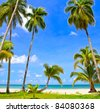 Coconut palm trees on tropical luxury beach - stock photo