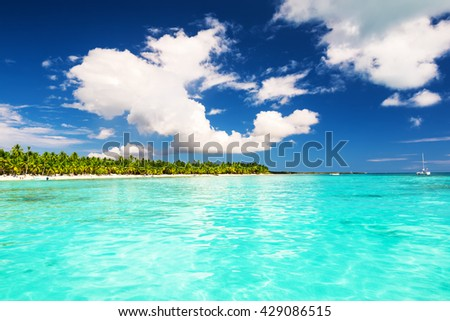Coconut Palm trees on white sandy beach in Saona island, Dominican Republic - stock photo