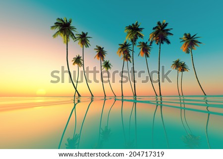 coconut palms at turquoise tropical sunset over calm sea - stock photo