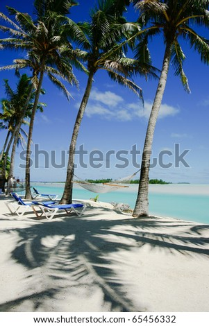Coconut palms cast shadows on the white coral sand.